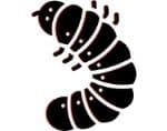 Grub Icon